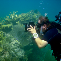 Coral Reef Science & Monitoring/CoralReefScience&MonitoringSm03.png