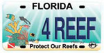 Funding for BleachWatch has been provided by the Protect Our Reefs Program