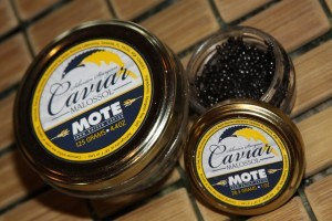 Mote Spins-Off Farm-Raised Caviar Operation