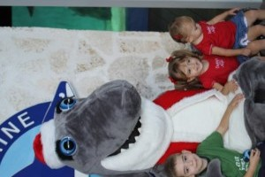Santa Jaws at Mote Aquarium