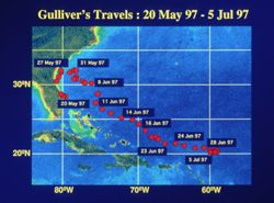 map showing the travels of a dolphin named gulliver
