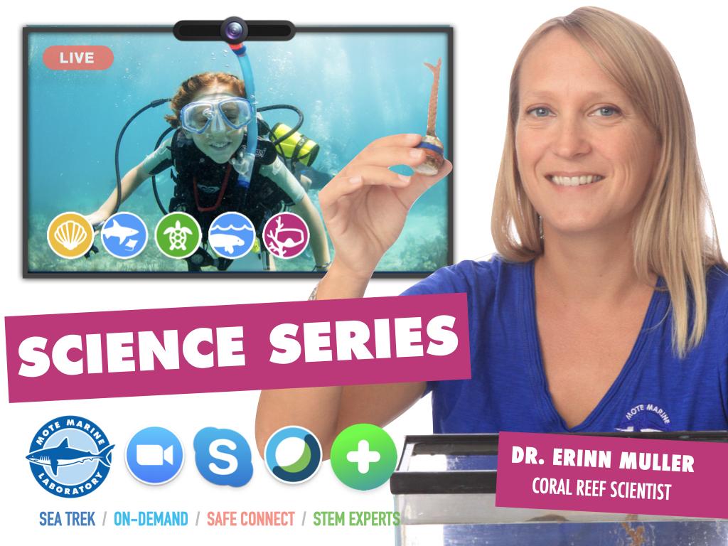 Mote SEA Trek: Science Series