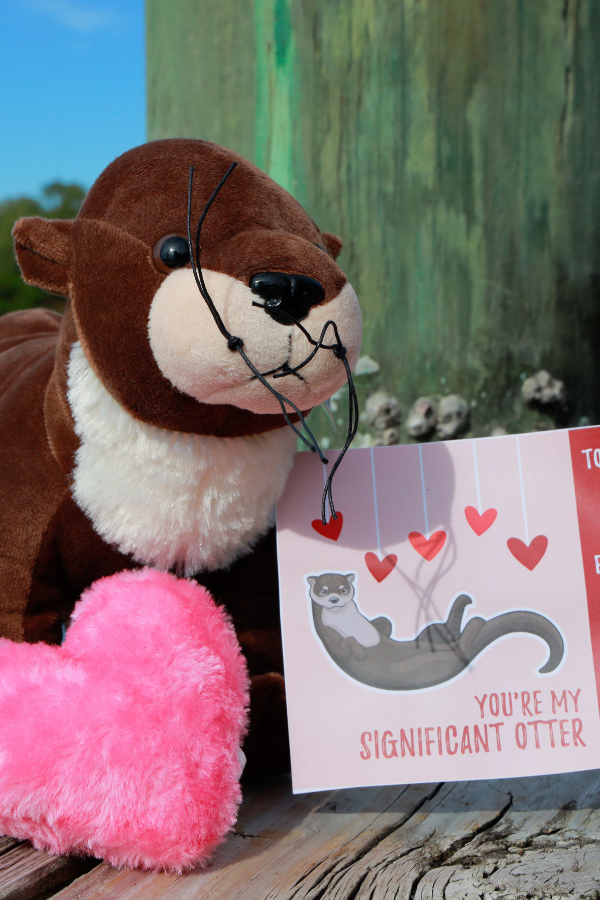 Send your significant otter an otterly adorable valentine!