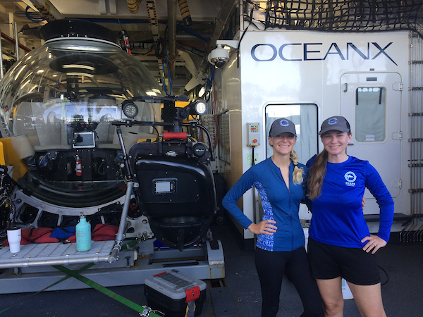 Mote scientists assess the health of Florida's coral reefs during the OceanX research expedition.