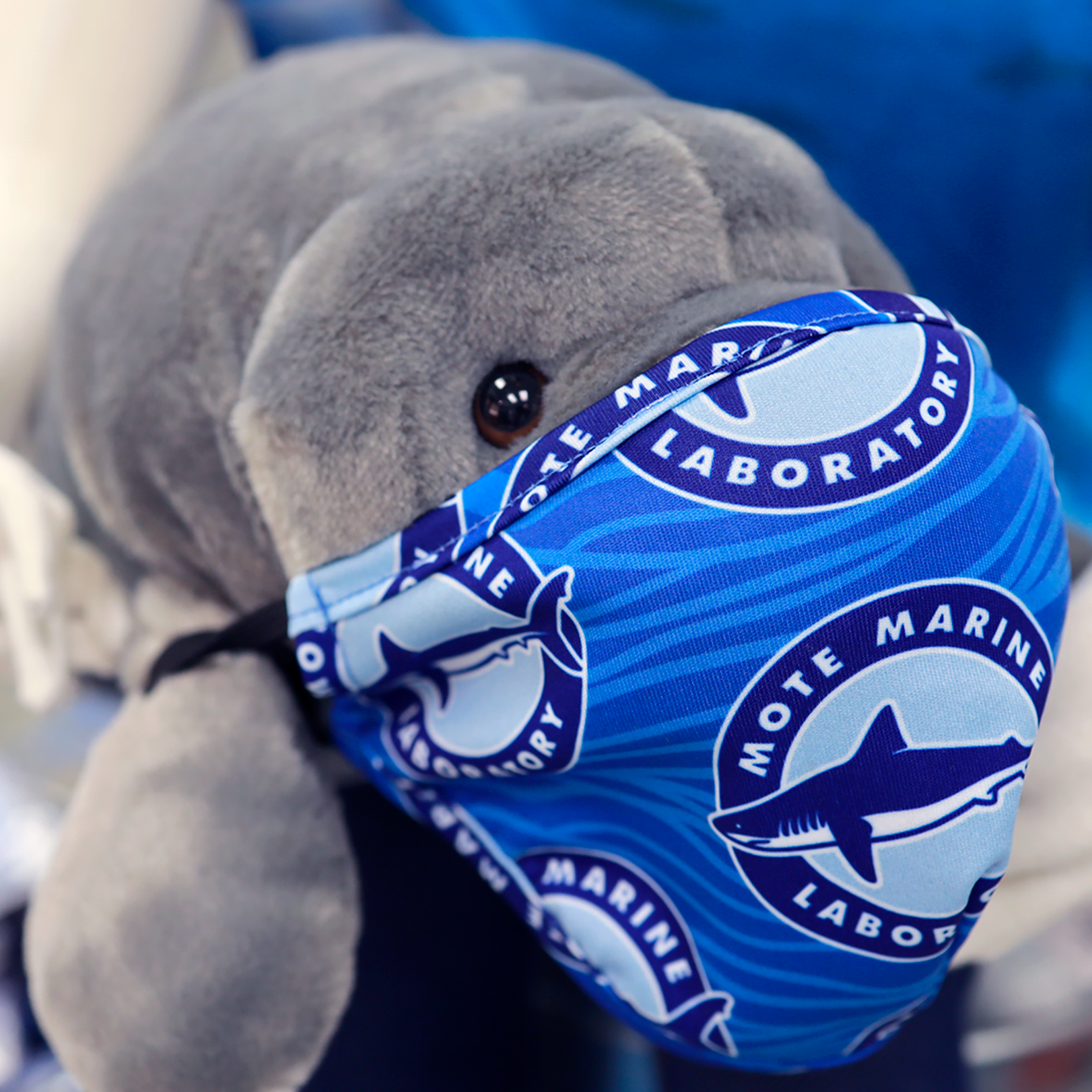 Plush manatee toy wearing a blue, Mote-branded mask