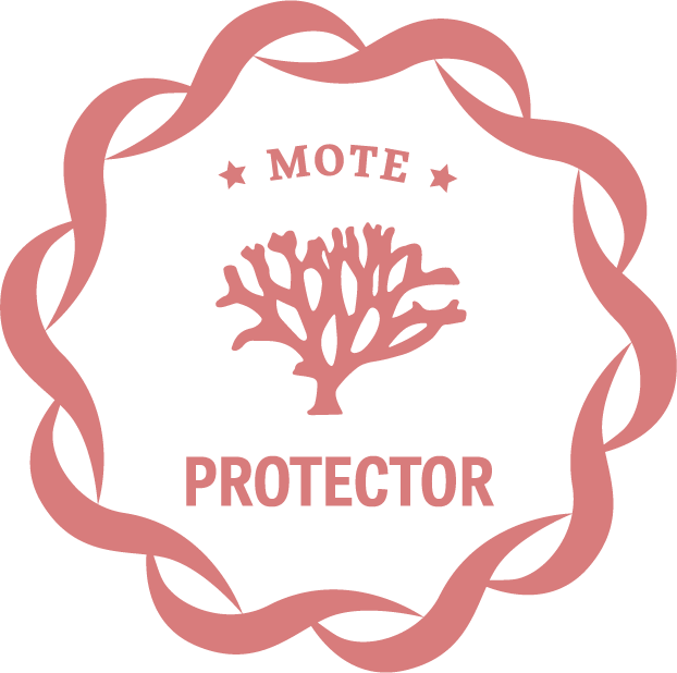 Protector giving level icon for Mote donors
