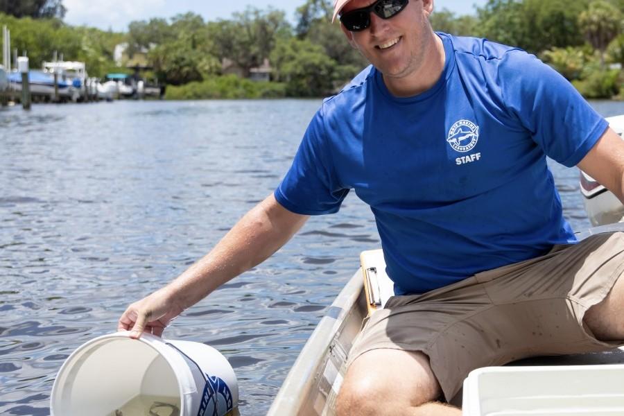 Dr. Ryan Schloesser releases snook into Phillippi Creek.