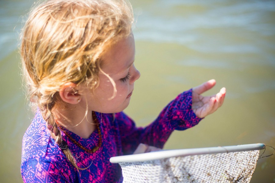 Attendees of the homeschool open house will have the opportunity to participate in a field exploration of Sarasota Bay.