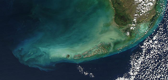 (Florida Keys aerial photo courtesy of NASA and published here: floridakeys.noaa.gov/ocean/limestone)