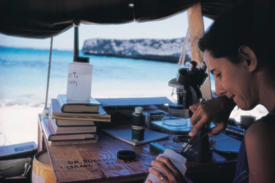 Mote Founding Director Dr. Eugenie Clark conducting research in Israel circa 1950s. Credit: Mote Marine Laboratory