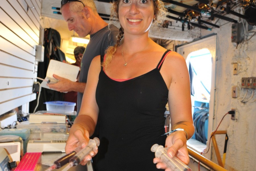 Major shark research expedition on M/V OCEARCH to launch in Gulf, include Mote scientist