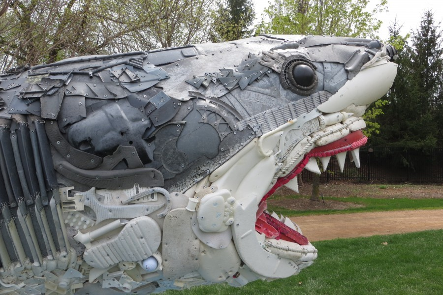 Greta the Great White Shark will be one of the sculptures at Mote's