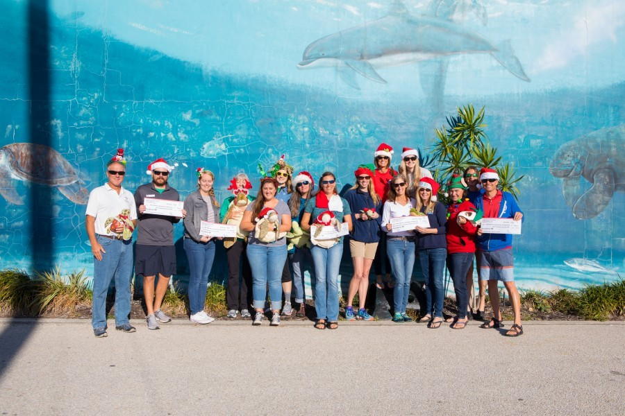 Longboat Key Turtle Watch donates to Mote's sea turtle and education programs. Credit Conor Goulding/Mote Marine Laboratory