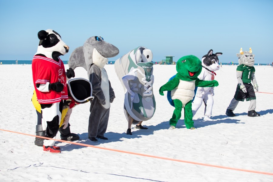 Local mascots of all sizes, shapes and species raced down Siesta Beach on March 6 to promote Run for the Turtles.