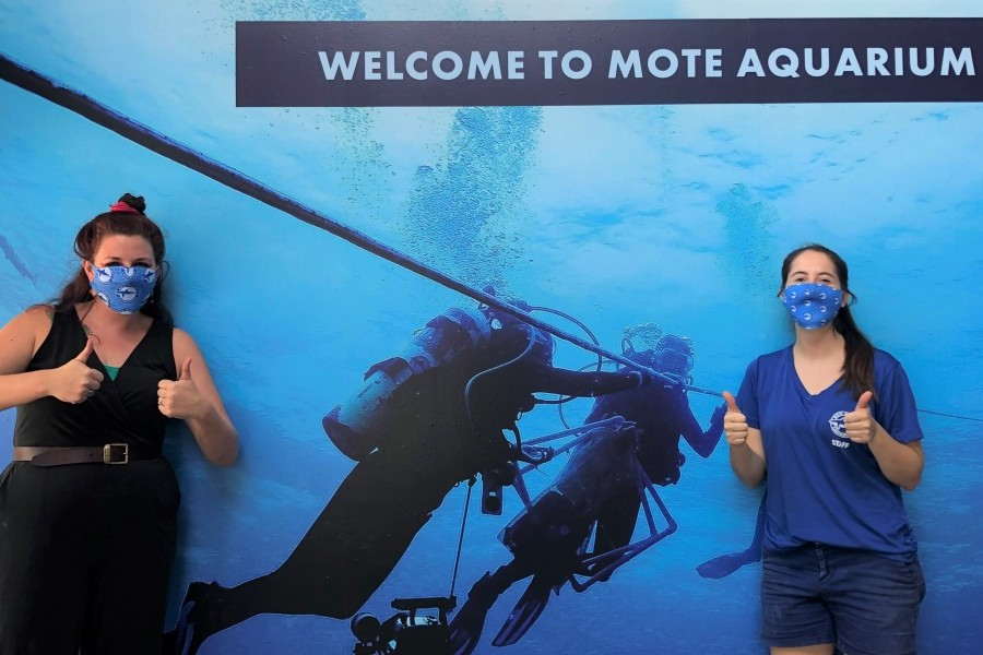 Mote Aquarium will reopen on June 5. Masks will be required for guests over age 5.