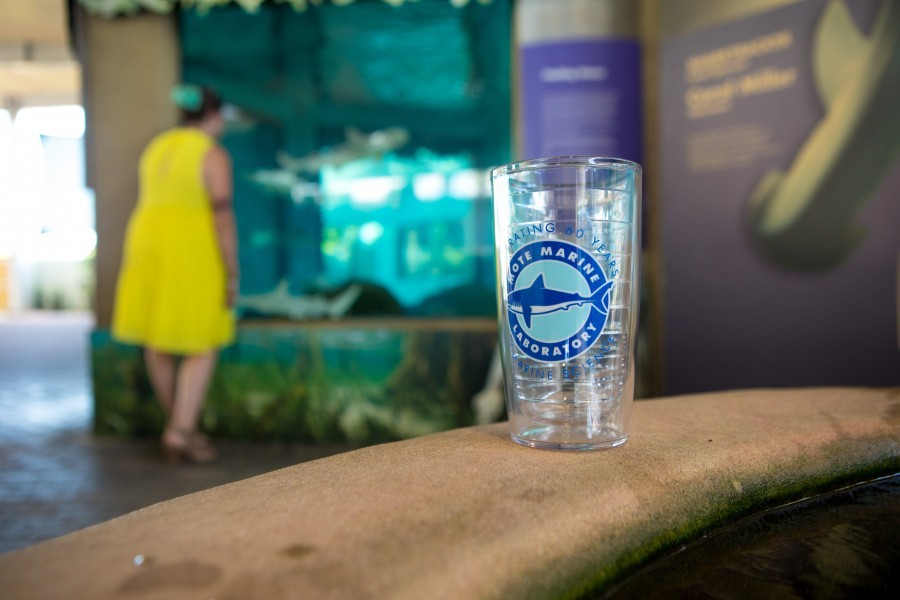 Free Mote Tervis Tumbler with full-priced, single-day, adult admission on Sunday, October 28, 2018. While supplies last