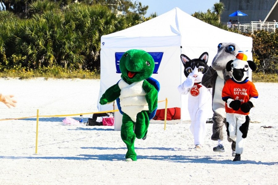 Motley crew of mascots to race ahead of Mote's Run for the Turtles