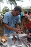 Dr. Jim Locascio of Mote Marine Laboratory dissects a lionfish caught during the second annual Sarasota Lionfish Derby.