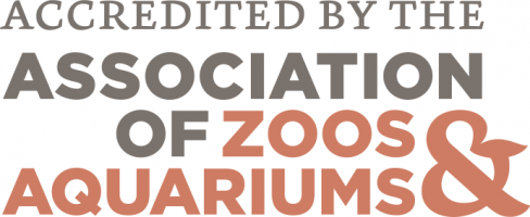 Badge of accredidation from the Association of Zoos & Aquariums