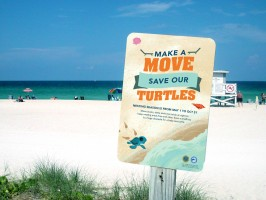 Ringling students, Silpa Joe and India Boeckh created two separate concepts for beach signs.