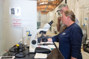 Mote Marine Laboratory staff scientists Dr. Nicole Rhody and Dr. Nate Brennan examine reproductive cells from almaco jack housed at Mote Aquaculture Research Park.