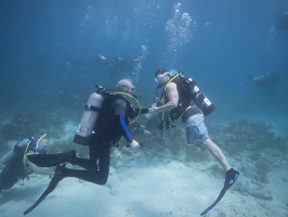 Mote President & CEO Dr. Michael P. Crosby shakes hands underwater with Retired Staff Sgt. Bobby Dove, Green Beret in the U.S. Army Special Forces after a mission well done on Monday, July 20, 2015. Photo credit: Joe Berg/WayDownVideo
