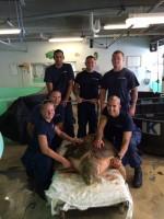 Coast Guard officials pose with Mrs. Turt Lee, a loggerhead sea turtle they rescued,  in the Sea Turtle Rehabilitation Hospital at Mote Marine Laboratory.