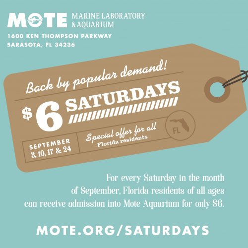 Mote is an independent nonprofit organization and has seven centers for marine research, the public Mote Aquarium and an Education Division specializing in public programs for all ages. Current Mote Marine Laboratory Printable Coupons and Savings for the Season.