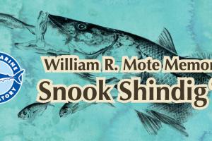 2019 William R. Mote Memorial Snook Shindig