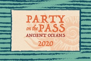 Party on the Pass, 2020