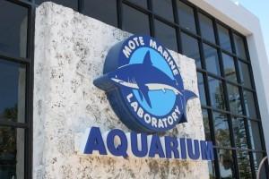 Trip Advisor names Mote 5th best U.S. Aquarium