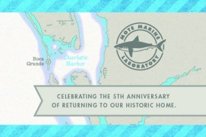 Boca Grande Office Anniversary Open House