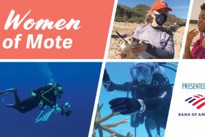 Women of Mote: Mote's Women Trailblazers