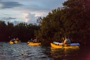 Kayaking With Mote