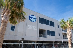 Mote's Elizabeth Moore International Center for Coral Reef Research & Restoration
