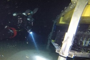 Discoveries from 350 feet deep