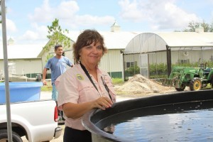 Mote Aquaculture Research Park to Participate in Eat Local Week