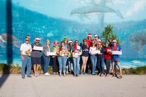 Longboat Key Turtle Watch grants holiday wishes for Mote's sea turtle and education programs