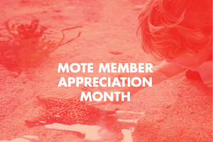Mote Members Only - Rise & Shine with Mote's Aquarium Biologists!