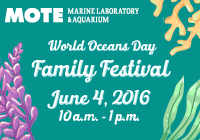 World Oceans Day Family Festival