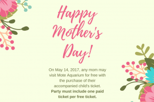 May 14: Mother's Day freebie at Mote Aquarium