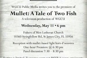 Mote scientists to participate in panel discussion after premiere of mullet documentary