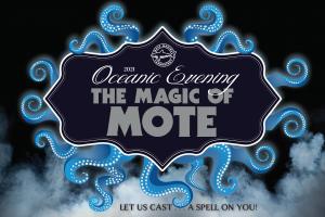 Oceanic Evening - The Magic of Mote