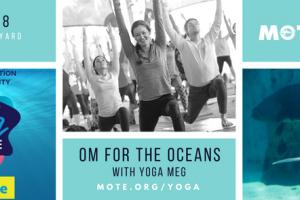 Om for the Oceans