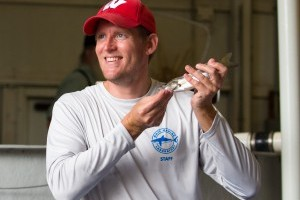 Snook released into Philippi Creek for ongoing study of popular sport fish