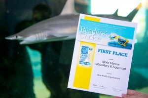 We Won! Sarasota Herald Tribune's Readers' Choice Awards 2019