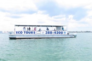 Boat tours are back!