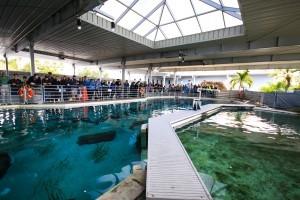 Virtual Shark Zone Tour