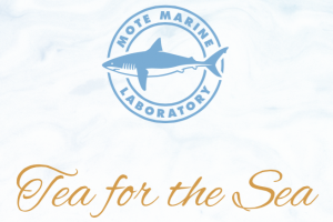 Tea for the Sea