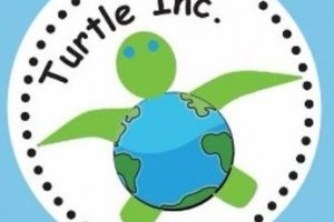 Turtle Inc. Mini Golf Tournament